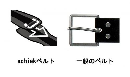 Schiek Lifting Belts 2004