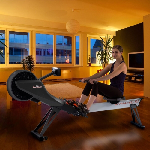 First Degree Golden Designs R1 Pro Magnetic Air Rower