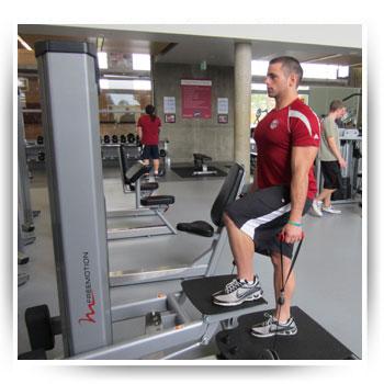 Fitnesszone Freemotion Step F614