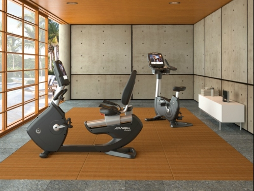 Life Fitness Platinum Upright with Achieve LED Console