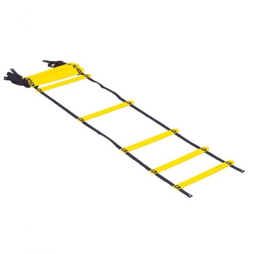 Prism Smart Acceleration Ladder